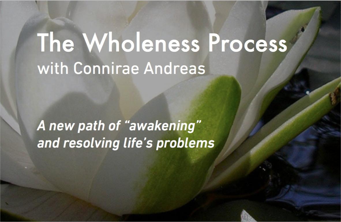 wholenessprocessstore